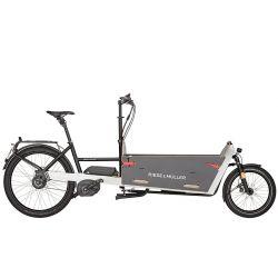 Vélo électrique Riese and Müller Packster 60/80 Vario chez vélo horizon port gratuit à partir de 300€