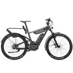 Vélo électrique Riese and Muller Delite GX Rohloff chez vélo horizon port gratuit à partir de 300€
