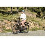 Vélo électrique Riese and Muller Culture GT Vario chez vélo horizon port gratuit à partir de 300€