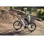 Vélo électrique Riese and Muller Nevo GX Rohloff chez vélo horizon port gratuit à partir de 300€