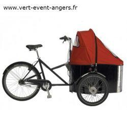 Triporteur NIHOLA Cigar Family chez vélo horizon port gratuit à partir de 300€