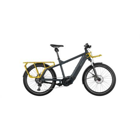 Riese & Muller Multicharger GT Vario 750 2022 chez vélo horizon port gratuit à partir de 300€