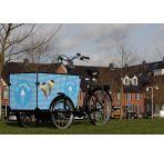 Triporteur électrique Babboe Transporter-E  chez vélo horizon port gratuit à partir de 300€
