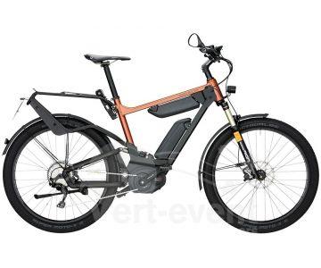 Vélo électrique Riese and Muller Delite GX Rohloff HS chez vélo horizon port gratuit à partir de 300€